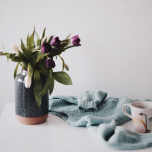 Virginie Zilbermann, photographe, nature morte, still life